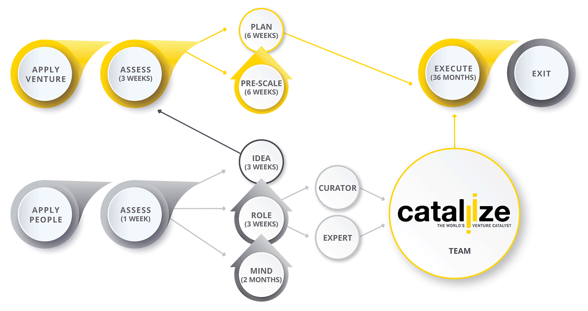 cataliize_infographic